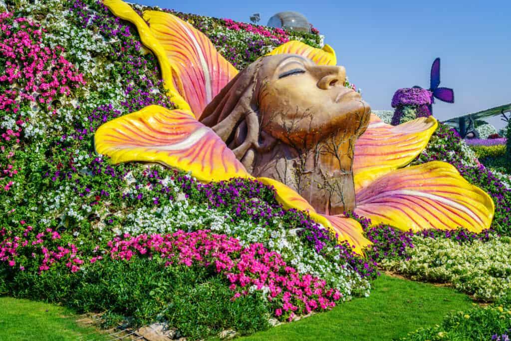 smukt billede fra en solbeskinnet dag i dubai miracle garden i uae